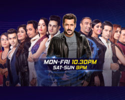 Bigg Boss 11 contestants names
